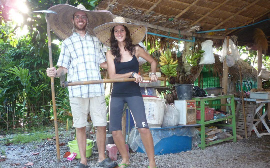 Woofing Thailande : Récit de mon expérience en Thailande