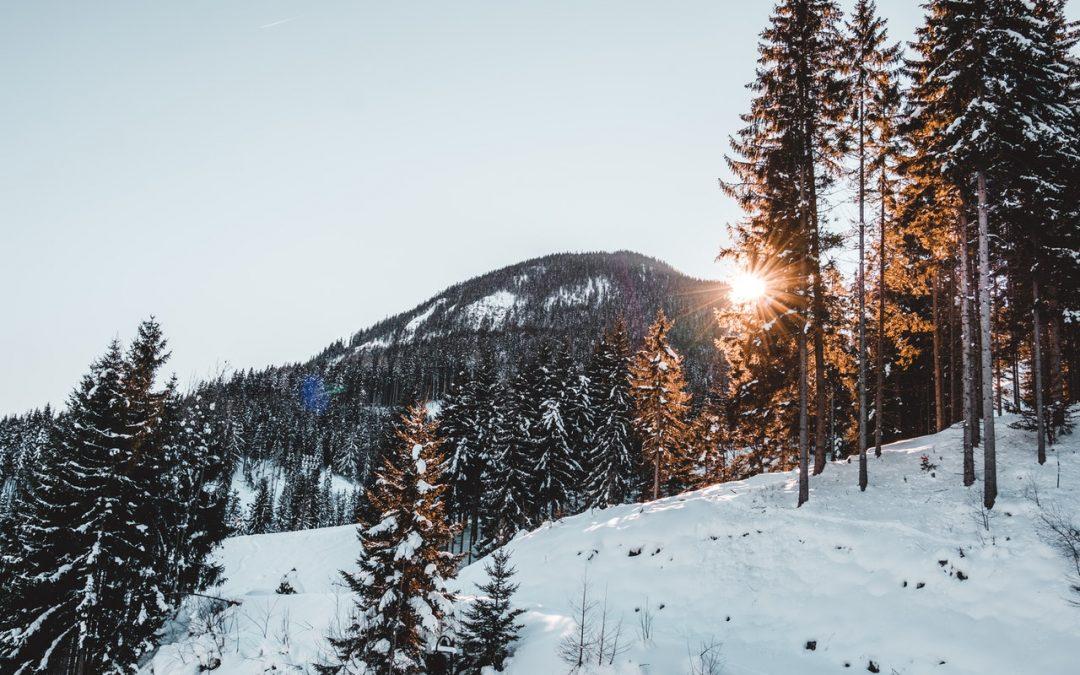 Wyoming : Visitez Jackson Hole au prochain hiver !